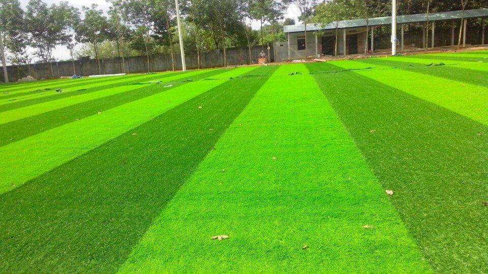 Cỏ nhân tạo tại bình phước- Cung cấp thi công cỏ nhân tạo sân bóng đá tại bình phước