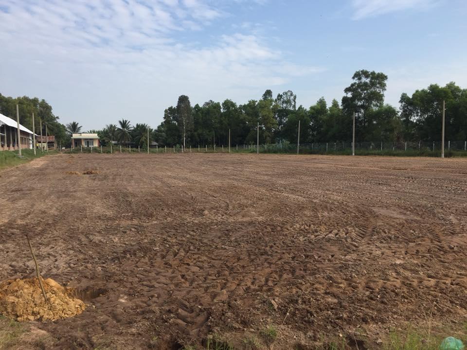 Công ty làm sân cỏ nhân tạo- diện tích chuẩn sân cỏ nhân tạo
