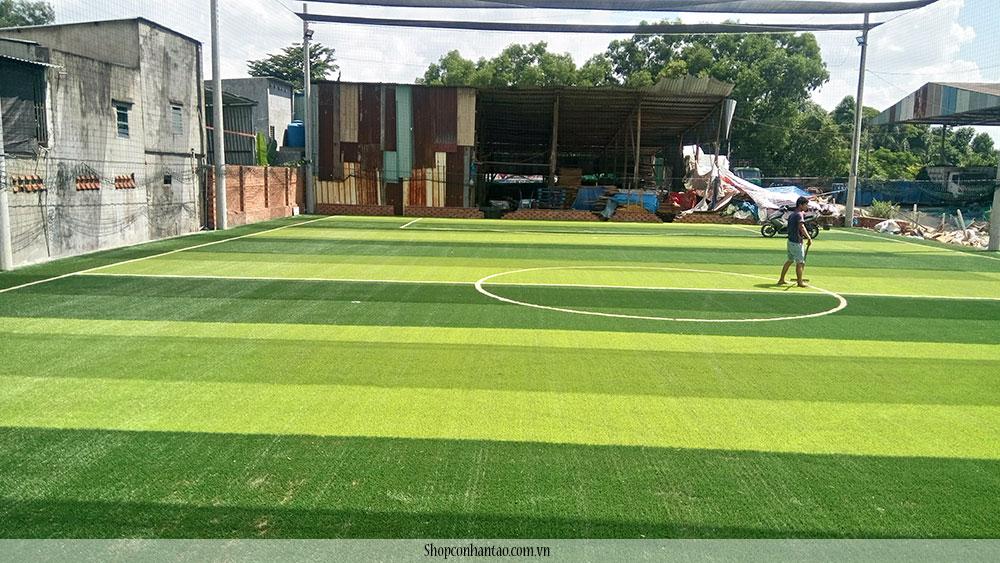 Cung cấp- thi công sân bóng đá cỏ nhân tạo tại bình dương