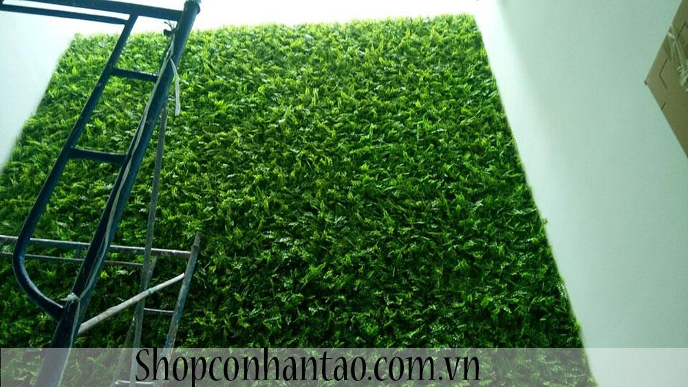 Vách tường lá liễu biệt thự chị Hương-Tân Phú