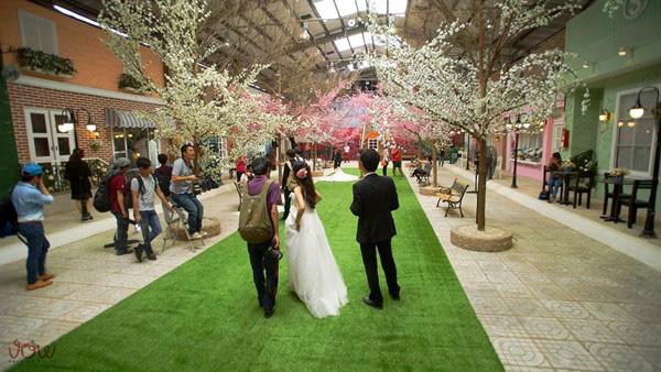 Cỏ nhân tạo trang trí khách sạn, nhà hàng, hội nghị, tiệc cưới