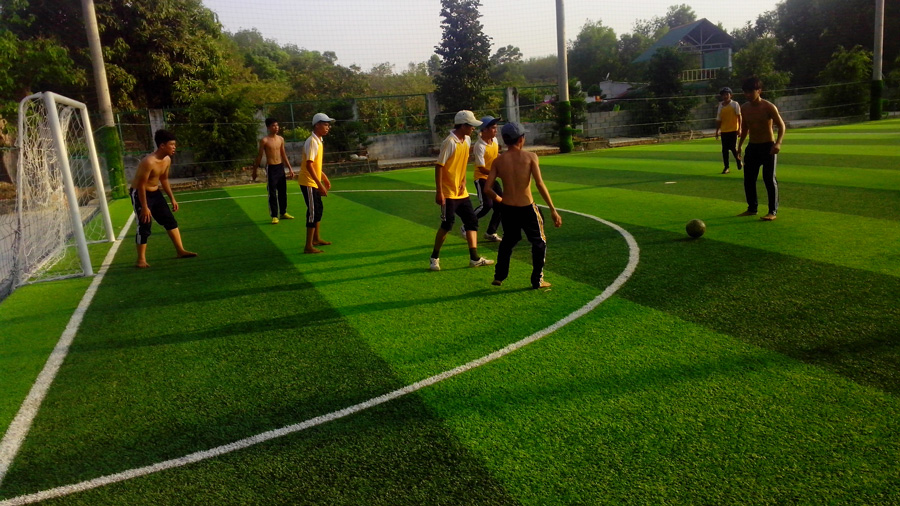 Cỏ nhân tạo sân bóng đá đồng nai