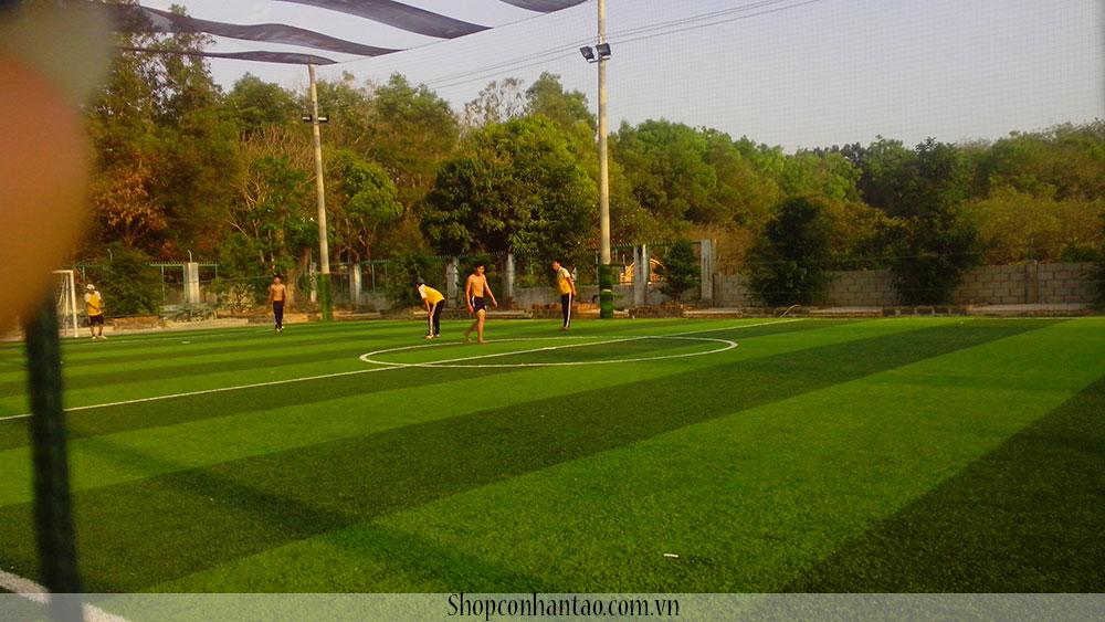 Thi công cỏ nhân tạo sân bóng đá mini tại tân an, cỏ nhân tạo tại long an